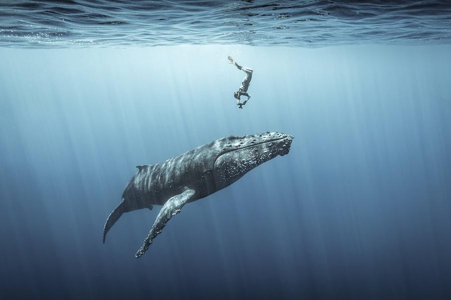 """3ème place Photographe """"Aventure"""" de l'année 2021 - Sébastien Pontoizeau © Sébastien Pontoizeau - Ocean Photographer awards"""