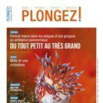 magazine_plongez