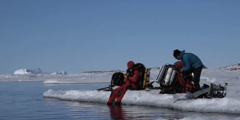 Expédition Antarctica : Laurent Ballesta plonge dans une rivière de glace